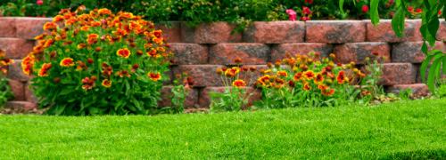 Nettoyage professionnel d\'espaces verts et jardins privés à Nancy et ...